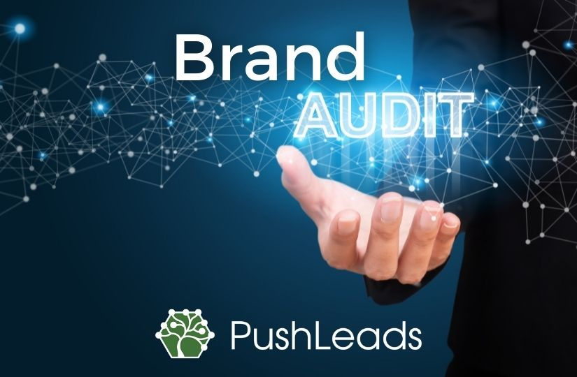 what-is-a-brand-audit